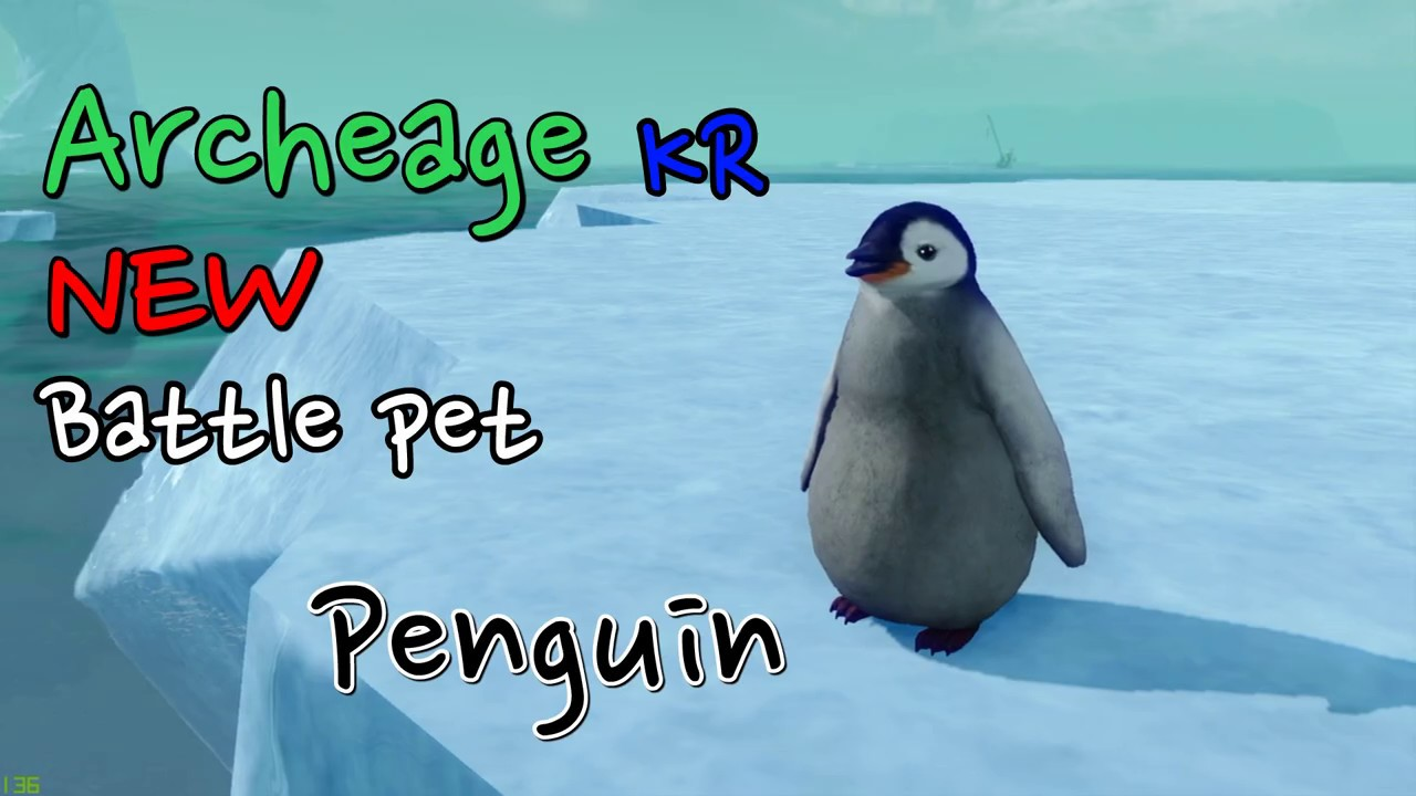 [ArcheAge] New Battle pet Penguin [아키에이지] 신규 전투 소환수 거울왕국 펭귄