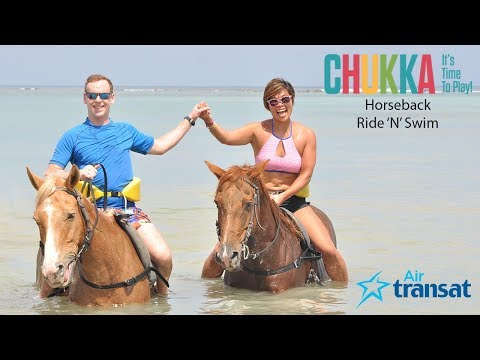CHUKKA HORSEBACK RIDE N SWIM JAMAICA - RIDE HORSES IN WATER - COOL EXCURSION - WHAT TO EXPECT