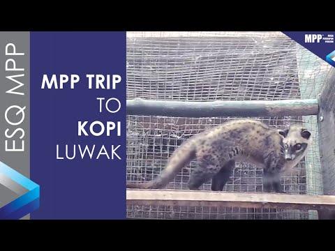 ESQ MPP - TMMIN Batch 4 - April 2019