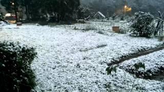 泰平里虎豹潭下大雪了。莱園都被大雪蓋住了。 園都 検索動画 27