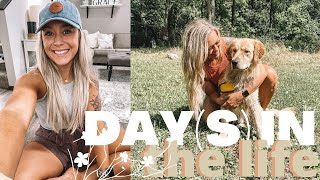 Baixar DAY(S) IN THE LIFE | SORTING, CLEANING, FDOE, ERRANDS - LIL BIT OF EVERYTHING | Holley Gabrielle