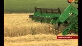 видео Больше половины урожая картофеля собрали вологодские аграрии