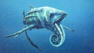 5 Самых Ужасных Доисторических Акул 1 часть