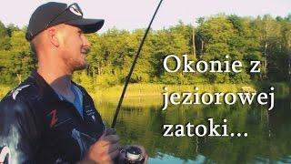 Окуні з озера затоки-ми ловимо з нового понтона BARK BT-310 S [Jez. Кишечник]
