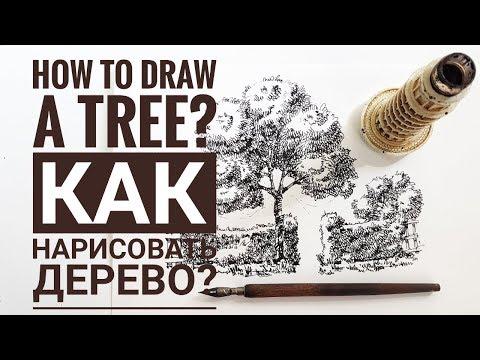 Скетчбук. . Скетчинг мастер класс для начинающих.  Часть 4. Как рисовать дерево. Эдуард Кичигин