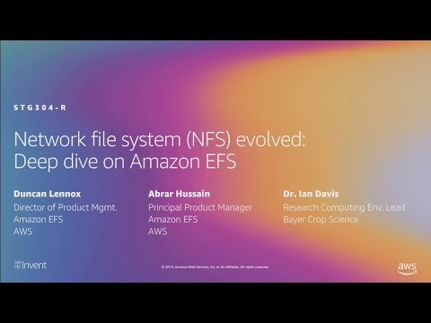 AWS re:Invent 2019: [REPEAT] Network file system (NFS) evolved: Deep dive on Amazon EFS (STG304-R)