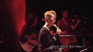 「吾亦紅」 LIVE 研ナオコ 研ナオコ 検索動画 17