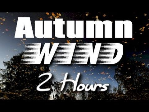 Autumn Wind Sounds : 2 Hour Long Relaxing Nature Sounds for Sleep