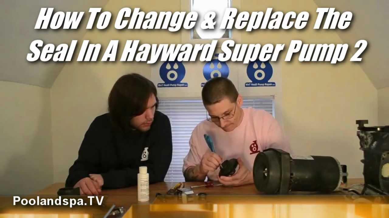 hayward super pump 2 seal change poolandspa tv swimming pool \u0026 spahayward super pump 2 seal change poolandspa tv swimming pool \u0026 spa pump repair series youtube