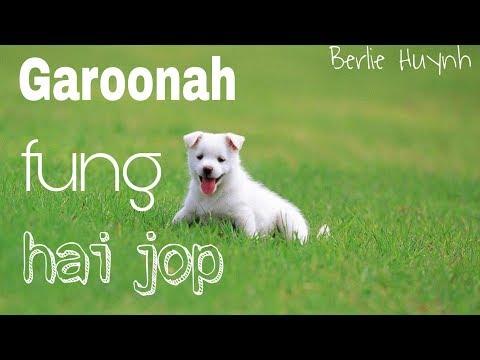 Garoonah fung hai jop - Cham Champram [lyrics]