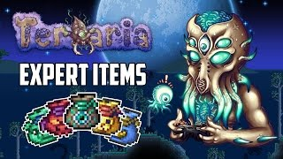 Terraria 1 3 Expert Mode Treasure Bags Top 5 Best Expert Mode Items PC XBOX1 PS4