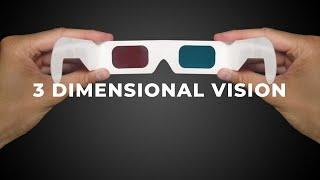 3 DIMENSIONAL Vision
