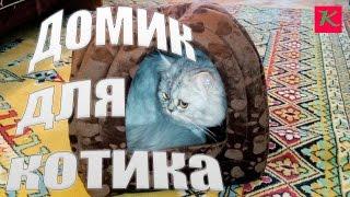 Обзор домика для кошек