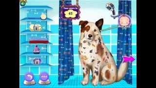 Как почистить собаку (Messy Dog With A Blog) - прохождение игры