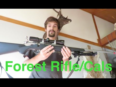 How To Choose An All Round Forest Rifle/Caliber