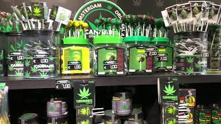 CANNABIS Marijuana Drugs Store Amsterdam Firenze , It seems as heav...