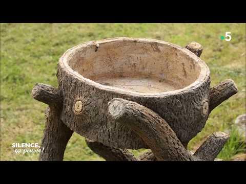 Comment planter des oignons silence a pousse doovi - Comment planter des oignons ...