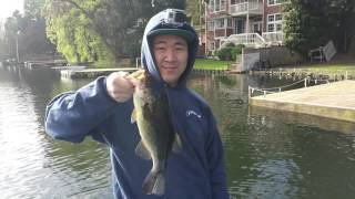 Pflueger Supreme Xt: Review With Bass Fishing Jigs