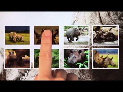 WWF Together App