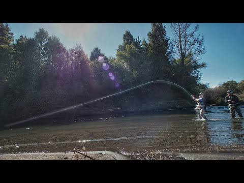 Fly Fishing For Trout + [How To Cross A River]