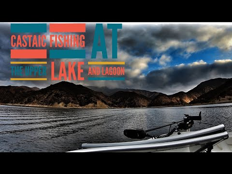 Castaic Lake Fishing-Upper Lake and Lagoon