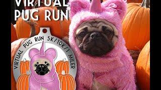 Pug Virtual Run 5k 10k 1 Miler