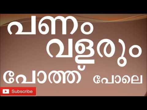 Low cost and High  Profit buffalo Farmig business in Kerala Malayalam പോത്ത് വളര്ത്തല്