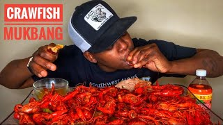 LOUISIANA CRAWFISH SEAFOOD BOIL MUKBANG