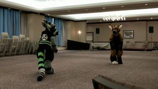 Telephone and Tayerr Goof Off Before a Panel - AnthroCon 2017