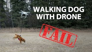 Walking Dog with Drone. FAIL!