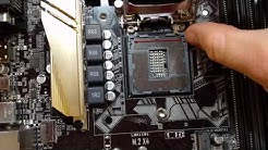 Install Intel CPU socket LGA 1151