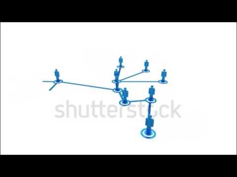 functional brain connectivity