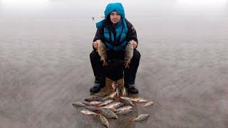 ЛОВЛЮ ЖИРНЫХ ОКУНЕЙ ГЛЯДЯ ИМ В ГЛАЗА Ловля окуня на балансир Зимняя рыбалка Ильмень 2020