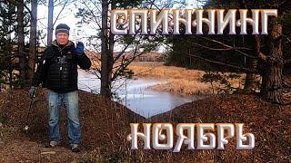 Рыбалка на спиннинг с берега на реке в ноябре