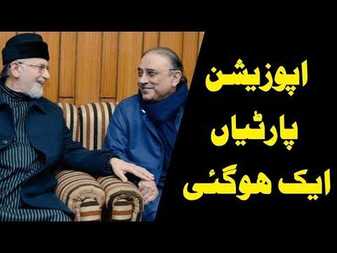 آصف علی زرداری کی طاہر القادری کو بلاول ہاوس آنے کی دعوت
