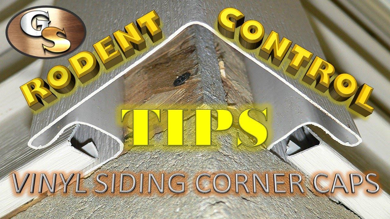 Rodent Control Tips Vinyl Corner Caps Youtube