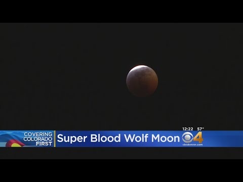BEARDO - Timelapse Shows Super Blood Wolf Moon Over Colorado