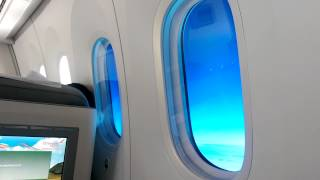 Boeing 787 window dimming system!