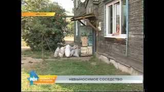 Квартира-свалка превратила жизнь целого подъезда иркутского дома в коммунальный ад(, 2015-08-25T04:29:29.000Z)