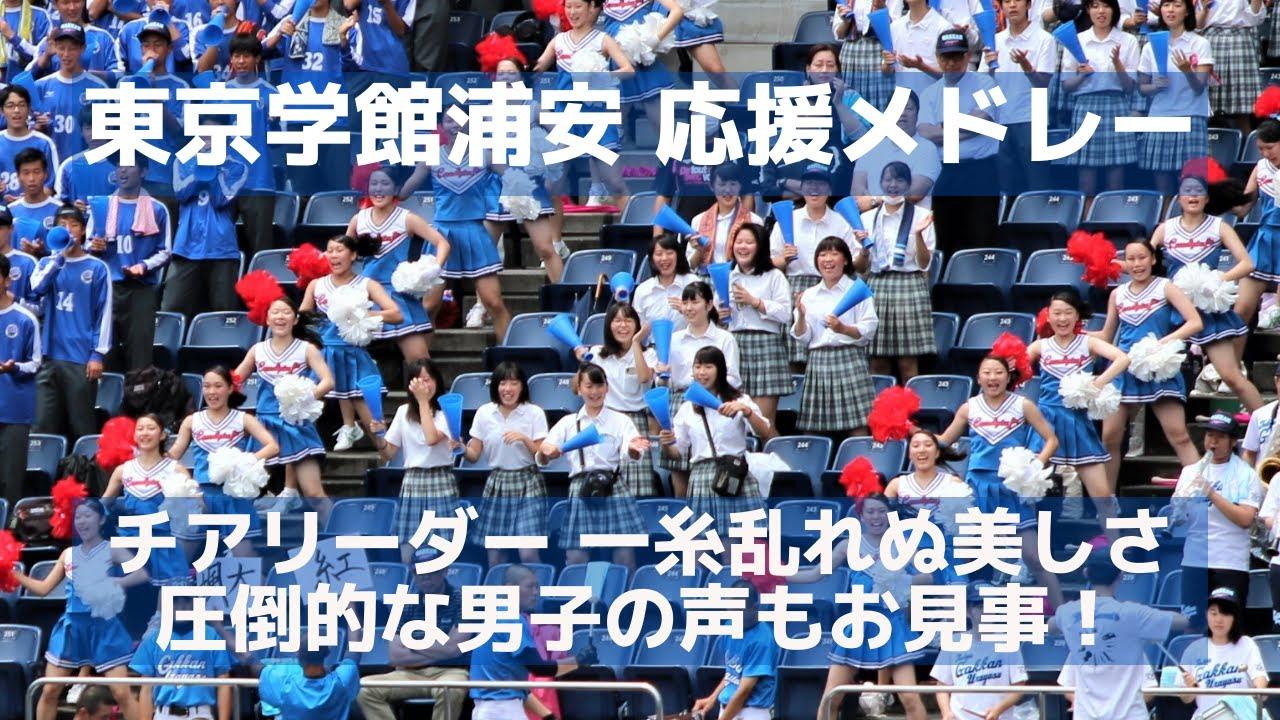 テレビ 高校 2019 千葉 野球