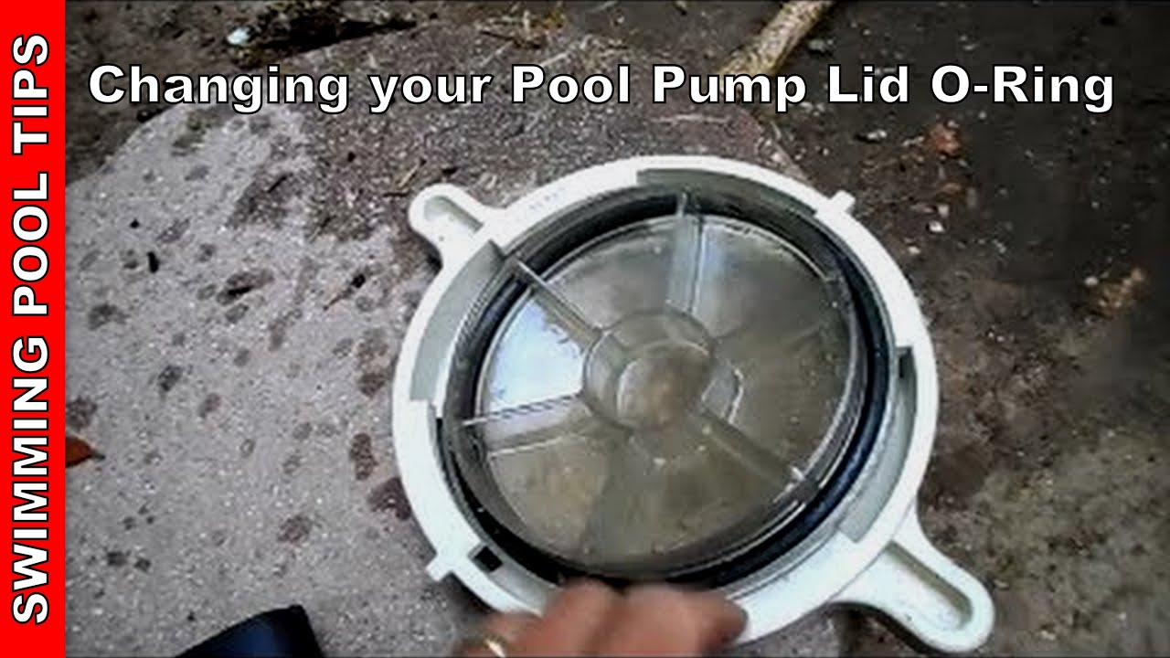 Pump Lid O Ring Pool Pump Not Priming Part 3 Youtube