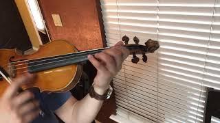 El autlense violin mariachi los camperos
