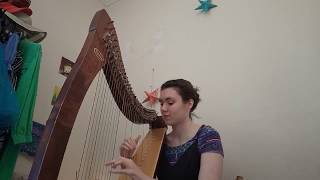 Star Wars Main Theme - Bristol Harpist