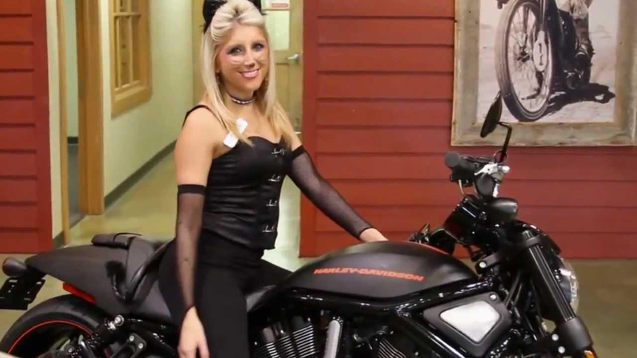 Harley Davidson Night Rider For Sale