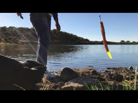Pescando  lobina con senko
