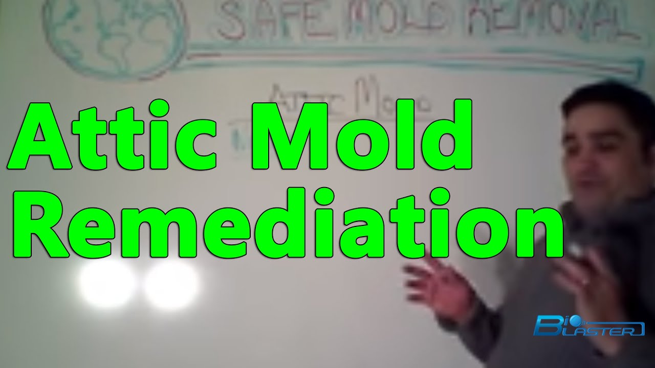 Attic mold removal attic mold remediation how to remove the attic mold removal attic mold remediation how to remove the green solution part 1 solutioingenieria Images
