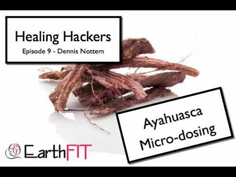 Micro-dosing With Vine Only Ayahuasca Interview With Dennis