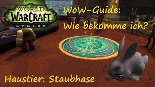 WoW-Guide: Wie bekomme ich das Haustier Staubhase?