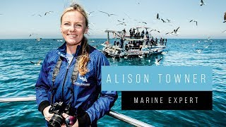 Meet South Africa with Alison Towner, the Marine Expert