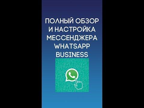 Полный обзор и настройка WhatsApp Business
